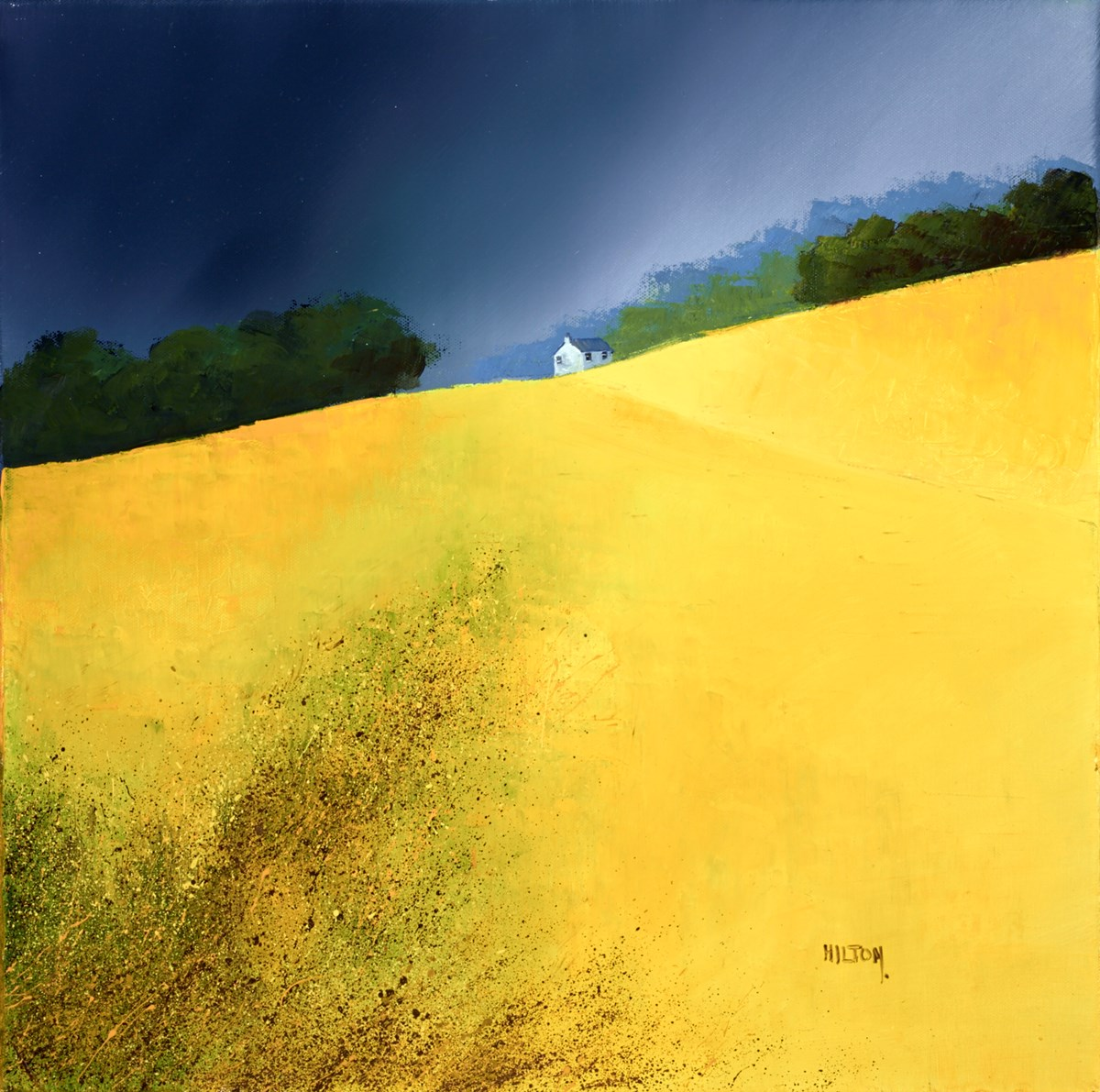The Golden Fields by barry hilton -  sized 20x20 inches. Available from Whitewall Galleries